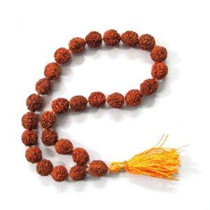 Rudraksha (28) Beads Bracelet